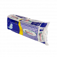 panberes-big-size-sanitary-napkin-10-pcs
