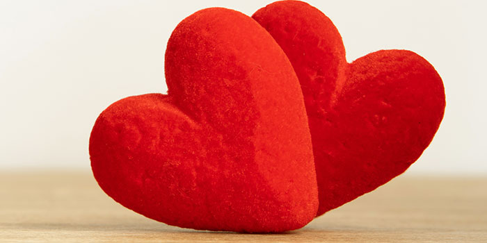 vecteezy_two-red-hearts-together-on-white-background