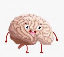 حافظه و اعصاب